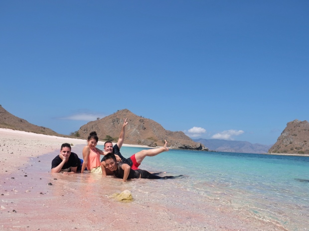 pink-beach-snorkeling